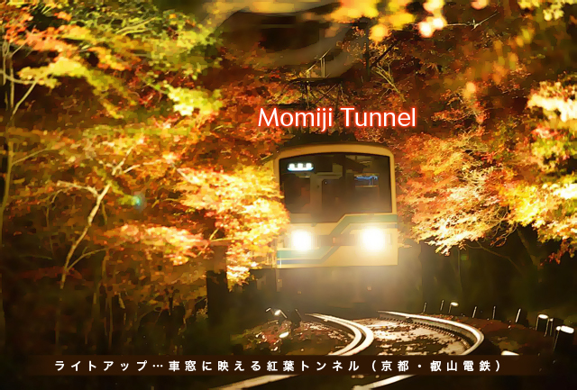 11.16Momiji Tunnel.jpg